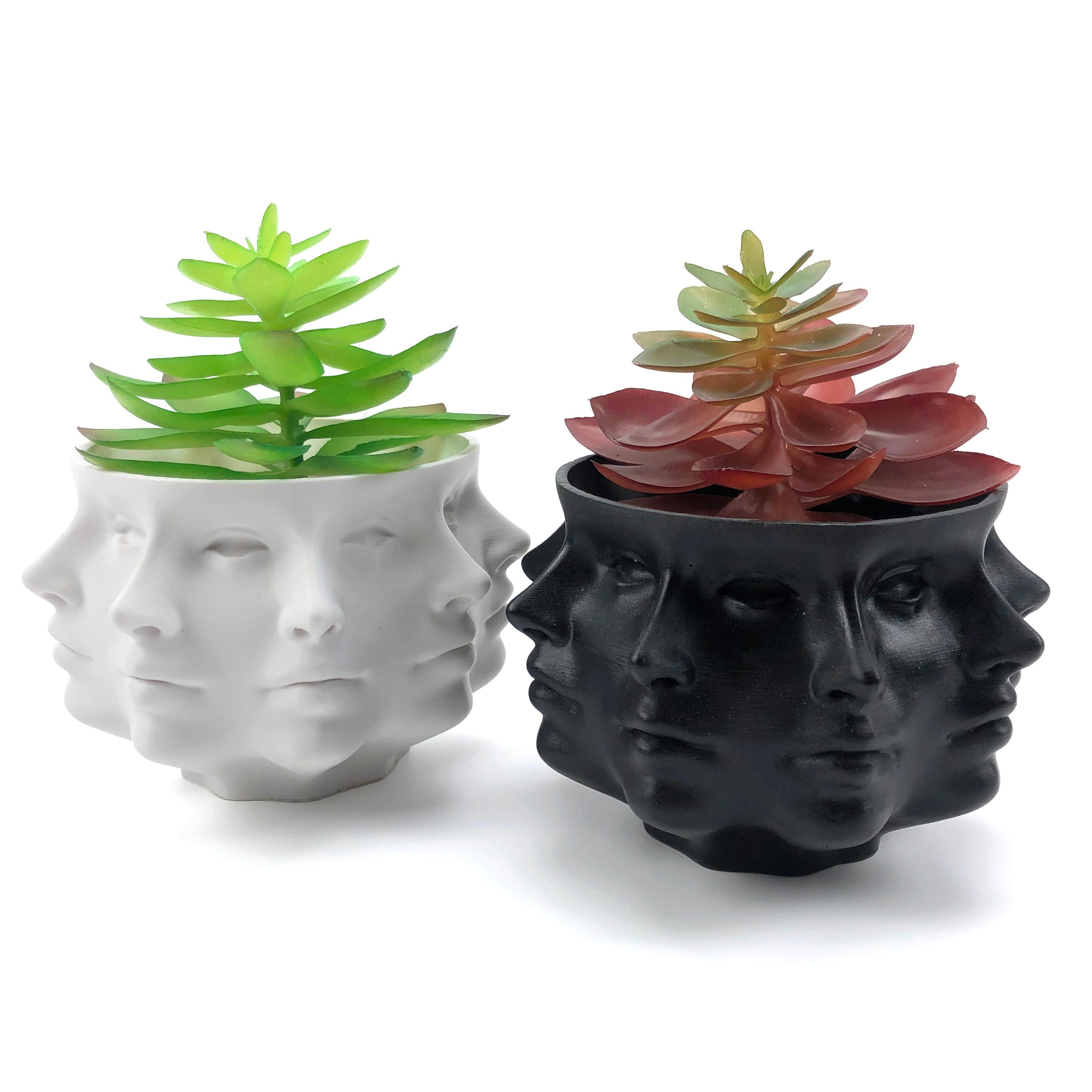 Multi-Face Succulent Planter Vase Small Face Planter Head Face Vase Home Decoration Succulent Cactus Indoor Plant Pot