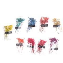 Natürliche Getrocknete Babysbreath Blumen Kristall Gras Gedrückt Emulation Blossom Home Office Decor Party