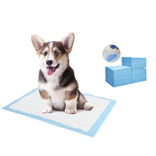 Litter-Pad Toilet-Mat Pets For Cat One-Time Diaper-Changing-Mat Absorbent Nursing