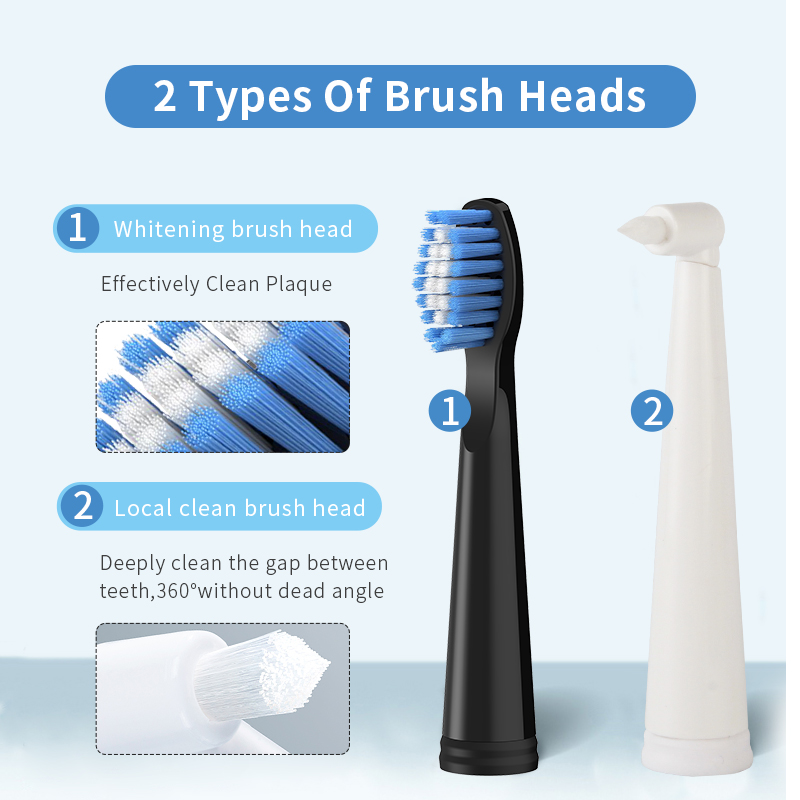 Seago Sonic Electric Toothbrush SG-575 Adult Timer Brush 5 Mode Usb Rechargeable Tooth Brushes Replacement Heads and Travel Box