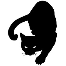 12*16CM PET CAT Car Stickers Decals Motorcycle Accessories Styling Black