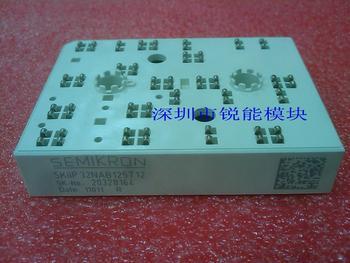 IGBT module / SKIIP31NAB125T12 SKIIP32NAB125T12--RNDZ