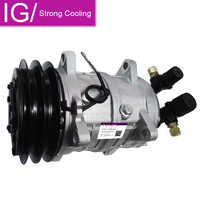 Auto AC Compressor TM15 TM16 Replaces HP150 10355011 48845011 2521152 With Two Grooves Pulley