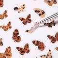 1 лист 3D наклеек для ногтей, бабочки, красочные переводки для ногтей, сказочные переводки для ногтей, переводки для ногтей, украшения для ног...