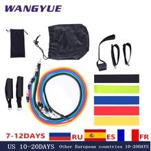 17 pçs/pçs/set faixas de resistência látex ginásio porta âncora tornozelo cintas resistir kit banda yoga exercício fitness expansor loop tubo puxar