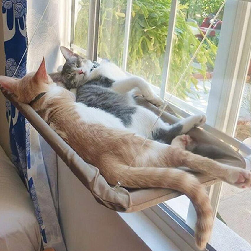 Cat Sunny Seat Window Mount Pet Cat Hammock Comfortable Cat Pet Bed Mat  Cute Pet Hanging Beds Set Bearing 20kg – Pet Care Shopping