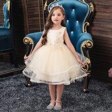 Милое Сетчатое платье принцессы детское с цветочной вышивкой