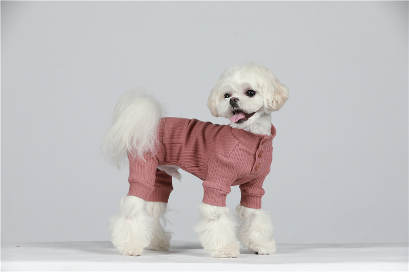 small puppy jumpsuit four legs (31)