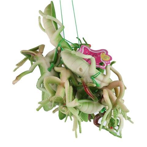 modelo brinquedos divertido assustador mantis complicado brincadeira