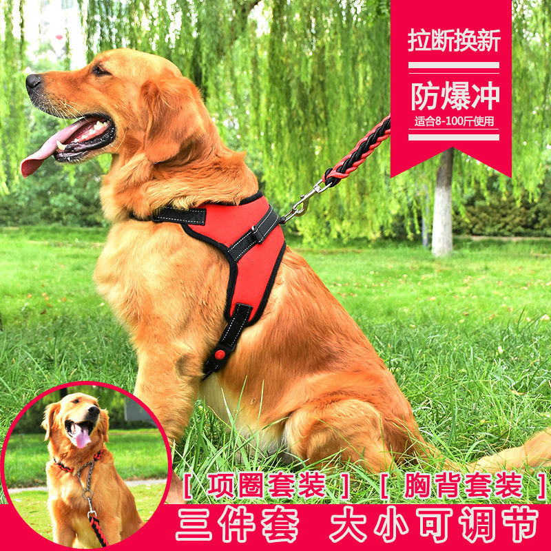 Lengthen Anti-Bite Rope Dog Hand Holding Rope Teddy Suppository Gou Tie Lian Tied Dog Chain Small Medium-sized Dog Pet Collar