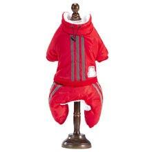 Новая одежда для Тедди французский бульдог померанский осенне