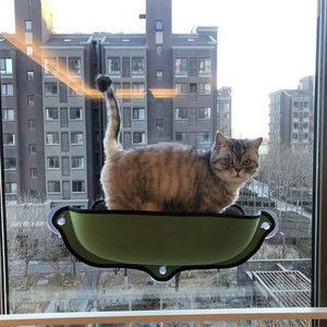 Image 5 - Cat Window Hammock Bed with Suction Cup Soft Kitty Hanging Sleeping Bed Basking Shelf Seat Pet Cat Rest House Bear Max 13kg