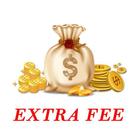 Additional Payment for product or shipping cost