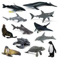 Simulated mini-marine animal toy scene model: giant toothed shark, killer whale, blue great white Penguin Dolphin