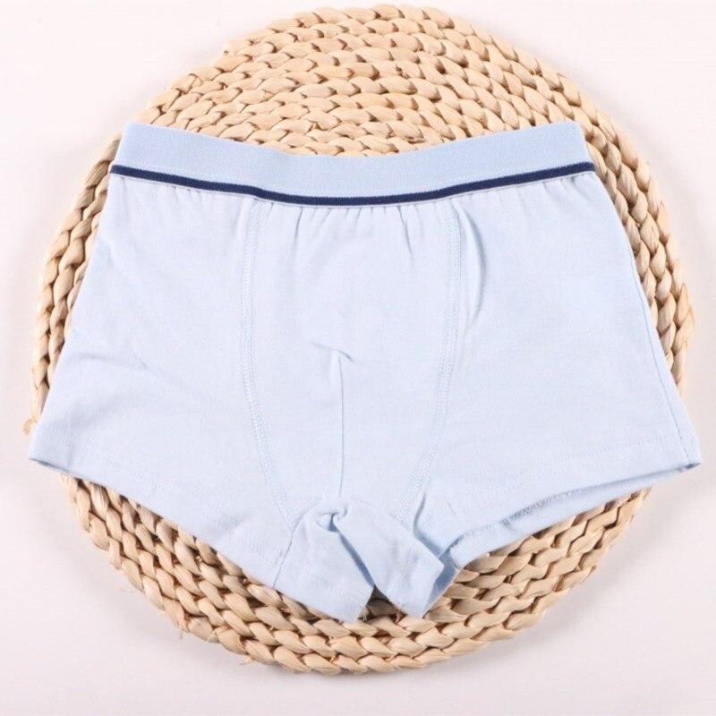 2 Pcs/Lot Boys Underwear Pure Color Kids Shorts Panties Cotton Baby Children Boxer for Teenager Underpants 2-10Y 6
