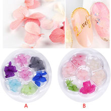 1 box 35pieces Natural small leaf Hydrangea Dried flowers, nail stickers Pressed flowers glass globe fillers nail accessory,HJJK(China)