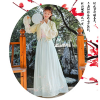 Blue Chinese Traditional Red Hanfu Mantle Cover Women Vintage Han Element Yellow Skirt Elegant Dynastie Tang Clothing Pink Sling
