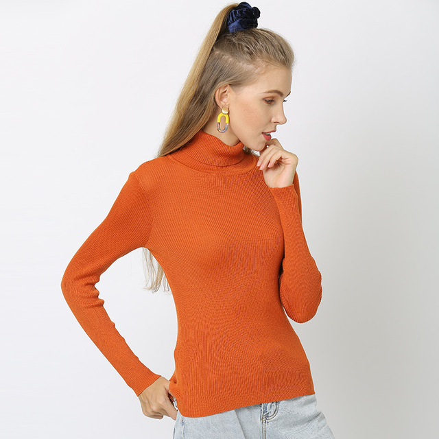 Duckwaver S~4XL Plus Size Women Sweaters Turtleneck Pullovers soft Primer Shirt  Long Sleeve Casual Slim-fit Knitted Sweater 4