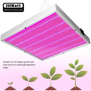 Image 4 - (2/paket) tam spektrum 2009LED ışık büyümeye yol açtı 200W kapalı bitki hidroponik için lamba sera çadırı çiçek sebze bitki büyüme kutusu
