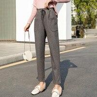 Thicken Wool Women's Pencil Pants 2019 Autumn Winter OL Style Wool Female Work Suit Pants Loose Female Long Trousers Capris