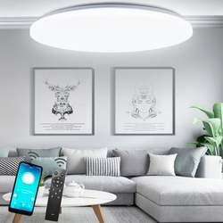 Ceiling led lighting lamps RC dimmable have remote control  modern bedroom living room lamp surface mounting balcony ceiling