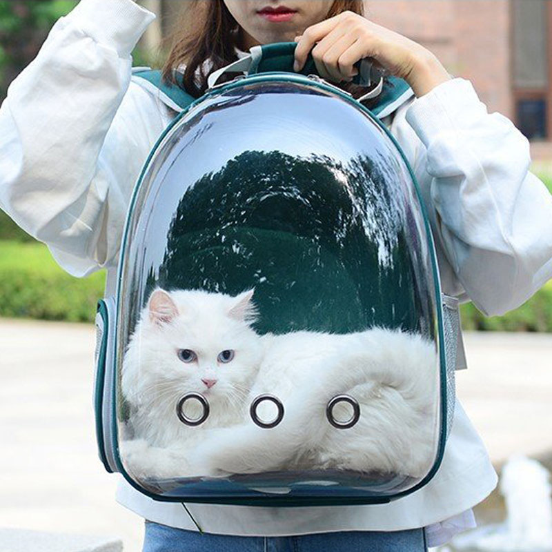 Pet Backpack Transparent Dog Cat Carier Rusksack Shopping Travel Portable Pet Bag Breathable Space Knapsack Animal  Carry Bag