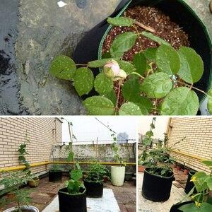 Image 5 - 5pcs 5/7/10 Gallon Felt Plant Growing Bags Vegetable Flower Potato Pot Container Garden Planting Basket Farm Home Mushroom Seed