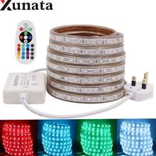 цена на AC220V Led Light Strip SMD 5050 LED Strip Light 60Leds/m Flexible IP67 Waterproof LED Tape With 20Key/24Key UK IR RGB Controller