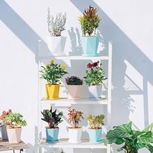 Balkon domowe rośliny doniczkowe umieścić w podłodze nawadnianie do ogrodu dekoracja do wnętrza domu ogrodnictwo doniczki styl skandynawski tanie tanio CN (pochodzenie) RUBBER