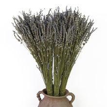 Натуральные сухие цветы 110 г освежитель воздуха для растений