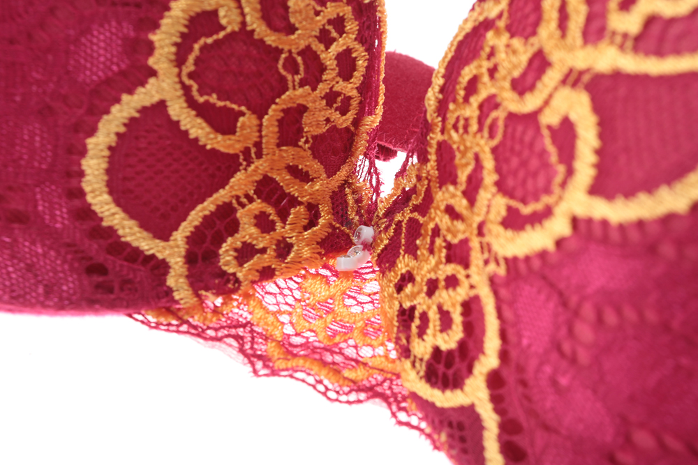 Lace Bra Beauty Back Push Up Bralette Brassiere Sexy Underwire Bra For Women Underwear Solid Color Female Lingerie
