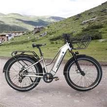 Best quality 26 inch 750w 1000w e bike big wheel carbon frame e bike for adults