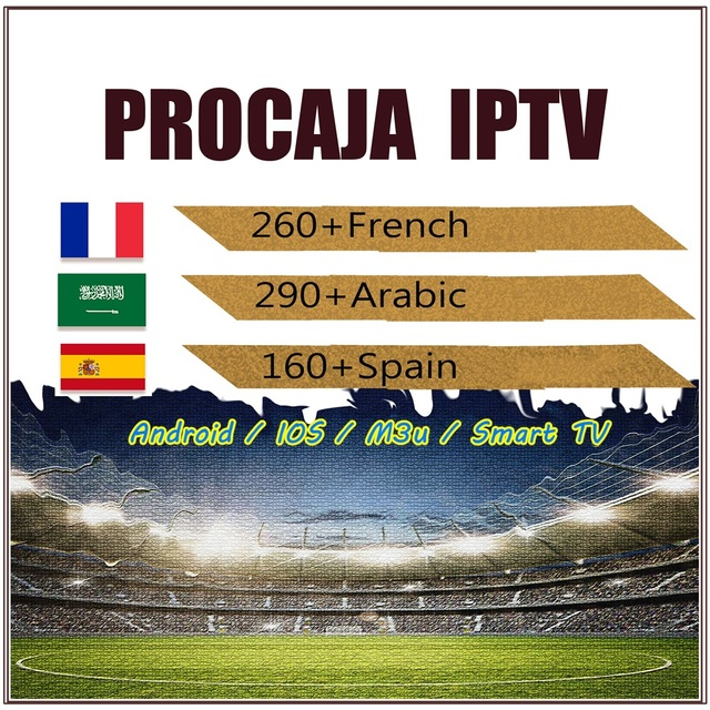 GOTIT IPTV ESPANA Procaja 1 Year Spanish IPTV Subscription IPTV French Arabic Portgual for Android TV Mac25x Box Smart TV IPTV