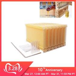 אוטומטי דבש אוסף קן מסגרת כוורן כוורת באיכות מזון פלסטיק כוורת בלוק דבורה טחול תיבת כלים גידול דבורים