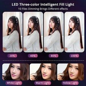 Image 4 - חדש ניתן לעמעום LED סטודיו מצלמה טבעת אור שלושה מהירות Selfie טבעת אור עם טלפון מחזיק חצובות עבור Youtube איפור וידאו חי