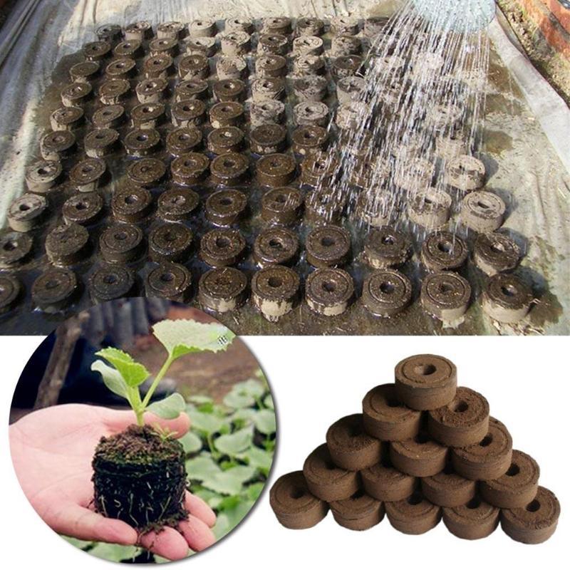 30mm Nutrient Soil Block Jiffy Peat Pellets Grain Starting Plugs Pallet POE Seed Starting Plugs Pallet Seedling Soil 1/5/10pcs