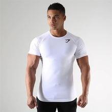 Мужская футболка летняя Новинка спортивные быстросохнущие дышащие