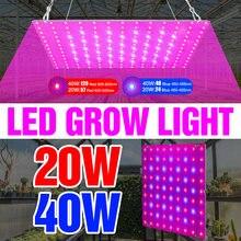 Светодиодсветильник лампа canling для выращивания растений 240