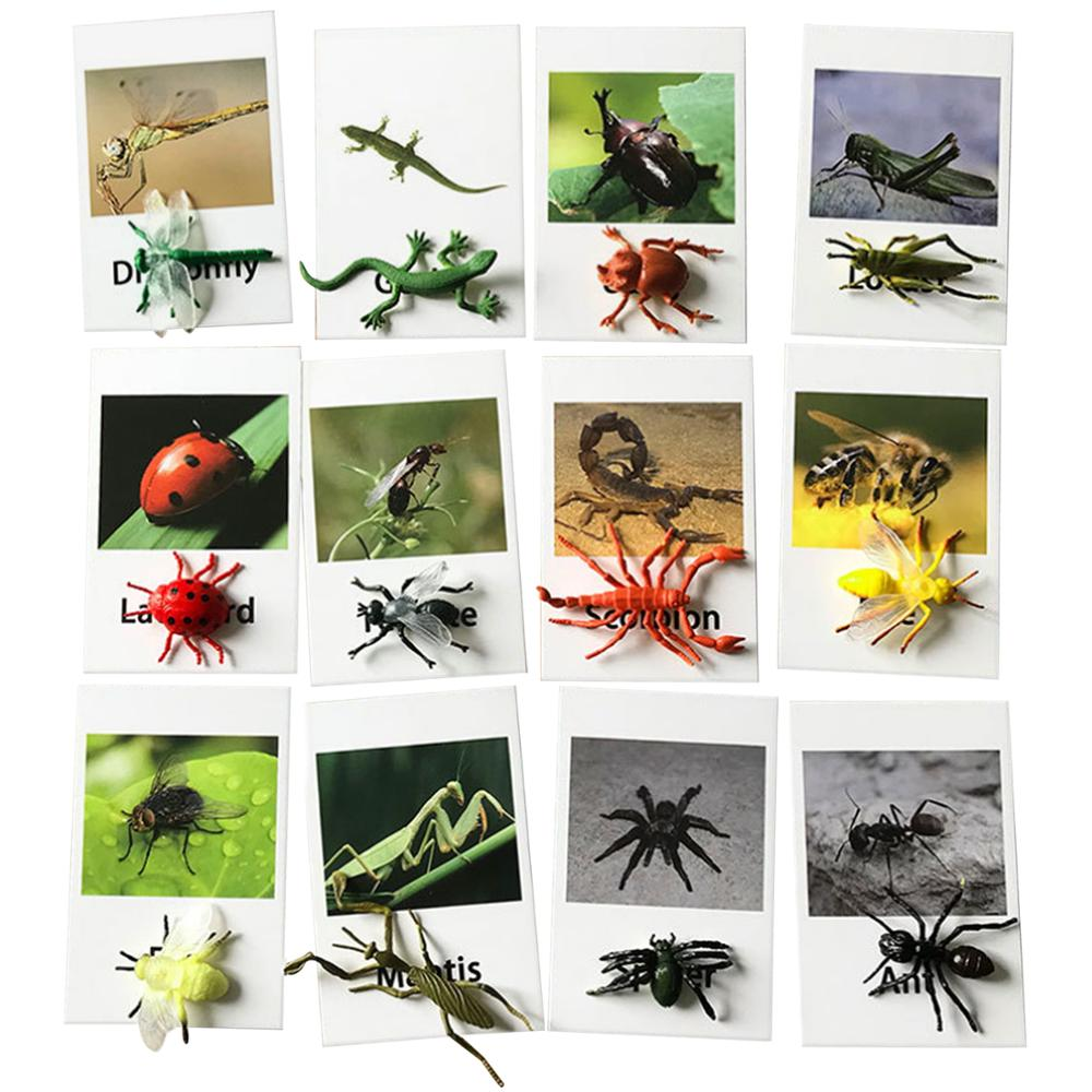 12PCS Montessori Animal Cards Funny Insect Figurines Toys With Matching Cards For Children Preschool Educational Toys Flash Card