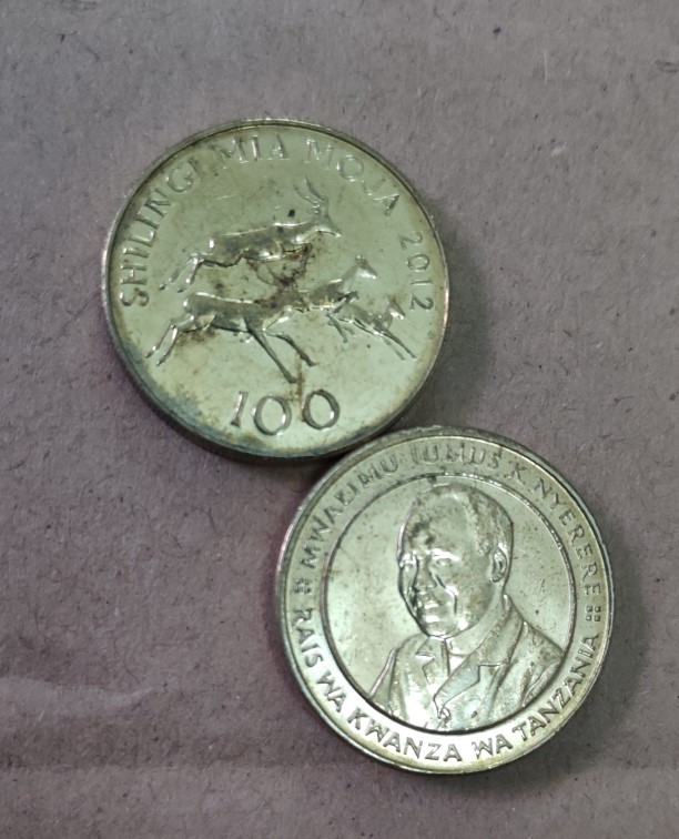 Tanzanian 100 Shilling 24.5mm Africa Coins Old Original Infrequent Coin Commemorative Edition 100% Real Random Year