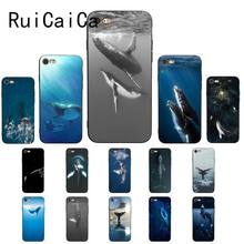ocean Whale Sharks fish Luxury High-end Protector Phone Case for iPhone 5 5Sx 6 7 7plus 8 8Plus X XS MAX XR 10 SE2 Cover(China)