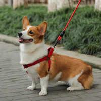 Trela do cão do tamanho médio e pequeno grande trela do cão material de náilon trela do cão preto, vermelho, azul, trela do cão anti trela do cão da ruptura