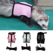 Harnais de furet réglable, bébé lapin/écureuil/Hamster Rat souris laisse corde de plomb