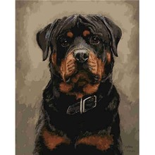 DIY Frame Black Dog Pictures By Numbers Oil Painting On Canvas Handmade Digital Acrylic Wall Art Unique Gift