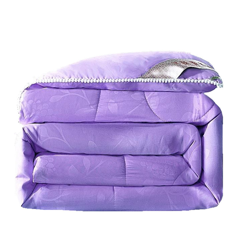 Summer Winter Silk Quilt Chinese Silk Comforter Purple Gray Green Colorful Duvet Filling Natural/Mulberry Silk Blanket Comforter
