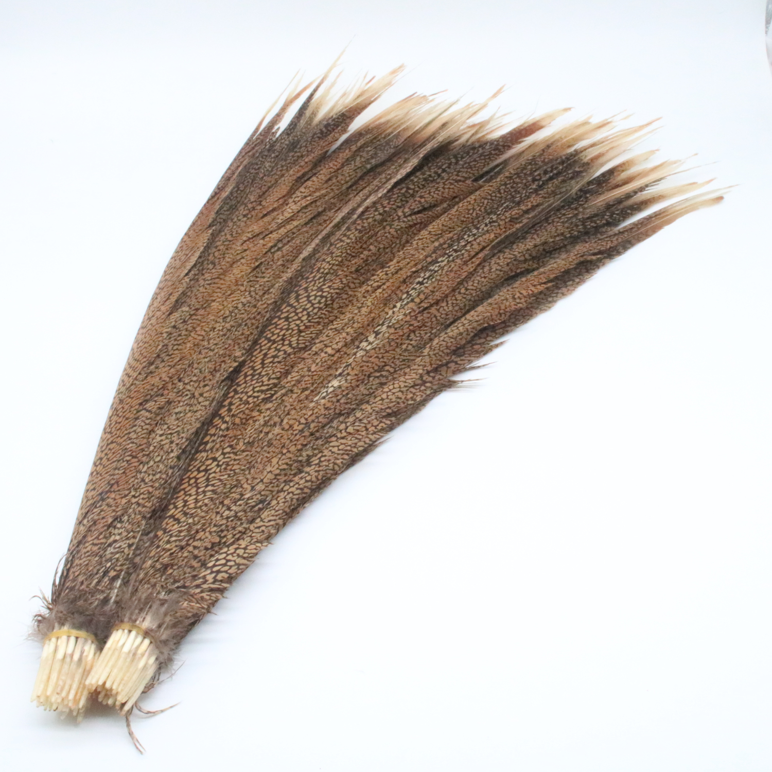 """18-20/"""" NATURAL LONG Ringneck Pheasant Tail Feathers 10 pieces"""