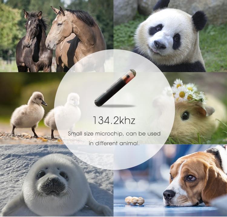 2.12mm animal microchip (6)