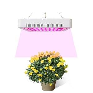 Image 5 - 300W الصمام تنمو ضوء الطيف الكامل النباتية نمو النبات مصباح للداخلية الخضار الشتلات زهرة الشتلات خيمة fitolampy