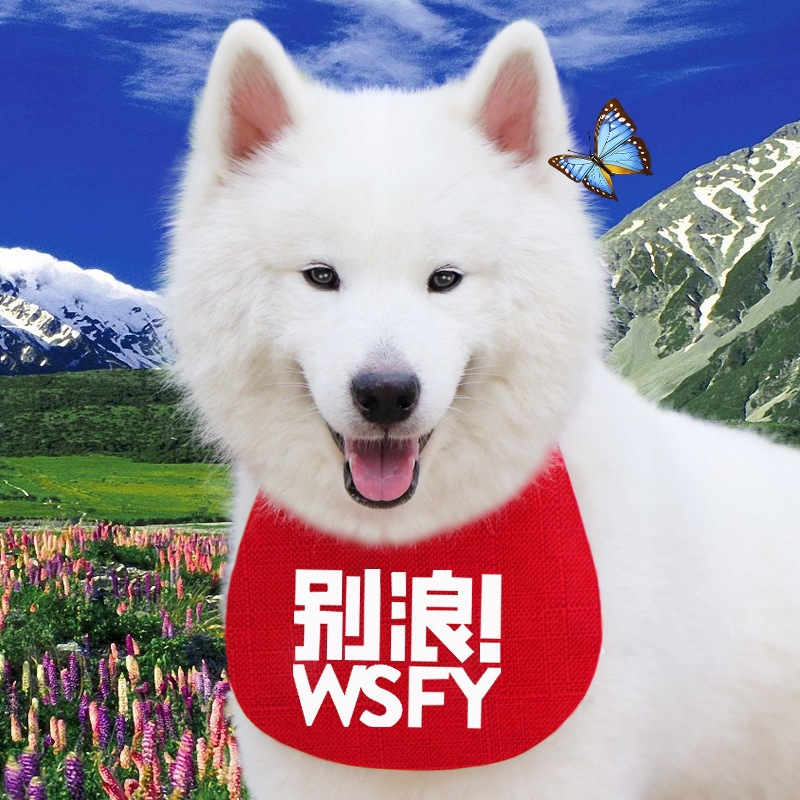Don't Wave Brand Pet Dog Pomeranian Teddy Small Dog Golden Retriever Large Dog Scarf Bib Cotton Linen Waterproof Bibs