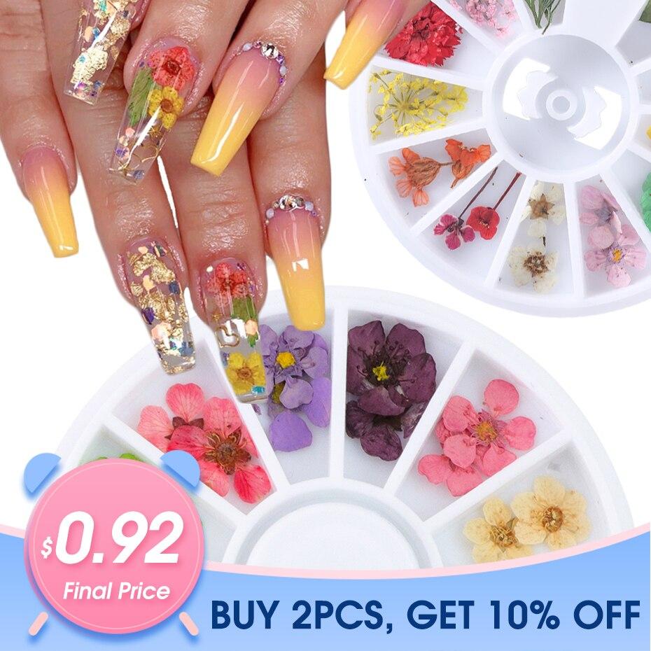 24pcs/Wheel 3D Dried Flower Nail Art Decoration Blossom Daisy Floral Leaf Slider Polish Sticker Summer Manicure Tools JIXHD-1